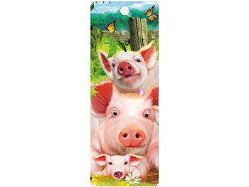 Bookmark 3D Pig pen
