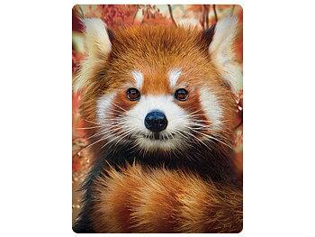Card 3D Baby red panda