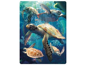 Card 3D Sea turtle swim