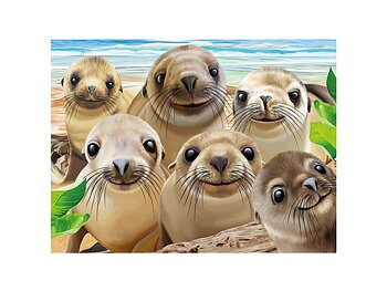 Card 3D Sea lion snap