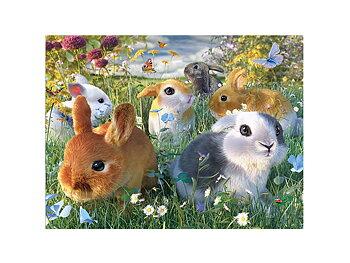Card 3D Bunnies