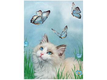 Card 3D Ragdoll & Butterflies