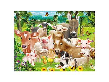 Card 3D Baby farm animals