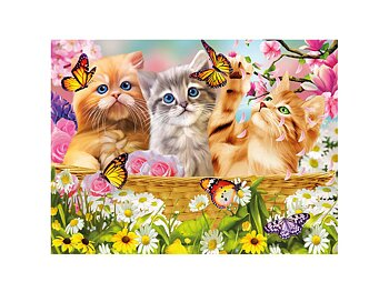 Card 3D Kitten fun time