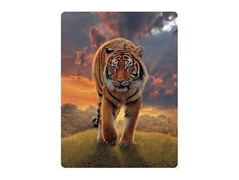Kort 3D Tiger i solnedgång