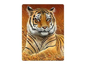 Kort 3D Tigerhanne sur