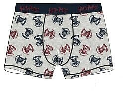 Harry Potter boxer