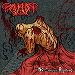 Paganizer - No Divine Rapture [CD]