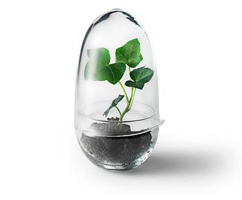 Grow Odlingskupa (Small)