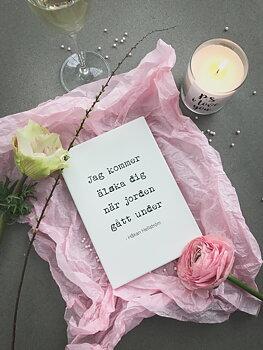 Citattavla med låttext - Jag kommer älska dig när jorden gått under