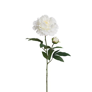 Pion Vit 65 cm - Snittblomma Konstväxt