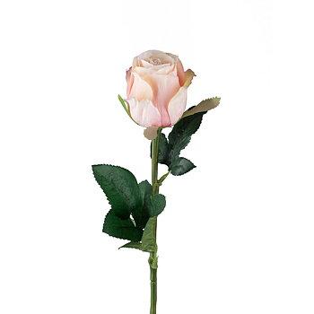Ros Rosa 50 cm - Snittblomma Konstväxt