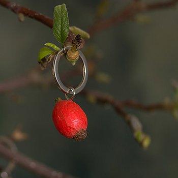 Keyring Roseship