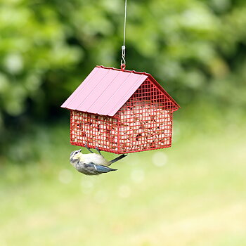 Peanut Feeder Cottage Red