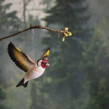 DecoBird Chardonneret Èlégant volante