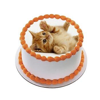Kakebilde Katt 17 R