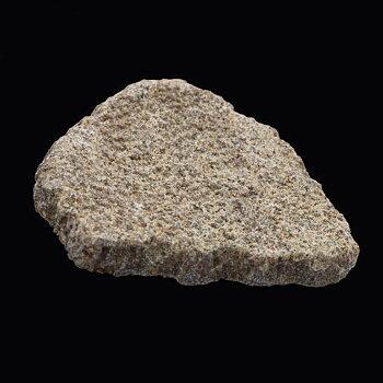 Saltasaurus eggshell