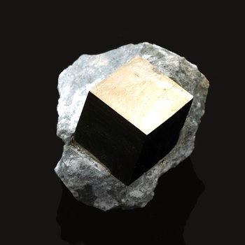 Pyrite in limestone
