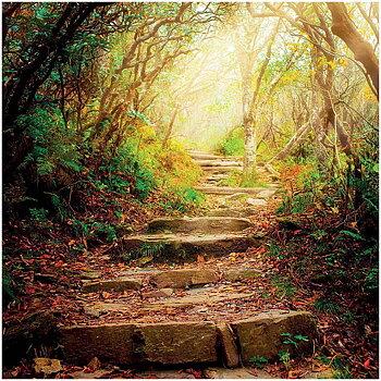 Dubbla vykort - The road ahead