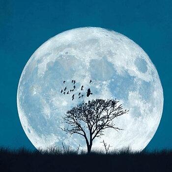 Dubbla vykort - Full moon
