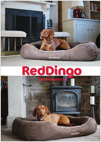 Reklamblad hundbädd A4