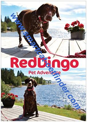 Reklamblad Red Dingo A4 Sommar