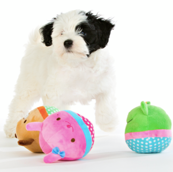 plyschboll hundleksak roliga djur