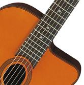 Akustisk gitarr, Aria MM-20E