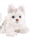 Westus Namu Bukowski hund  pojke eller flicka