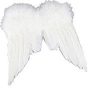 Vita änglavingar shabby chic lantlig stil