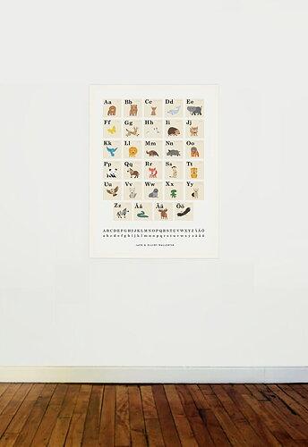 Poster, Casablanca Paper, Alfabet