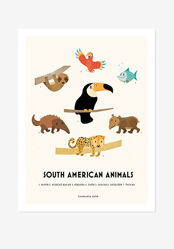 Poster, Casablanca Paper, South African Animals