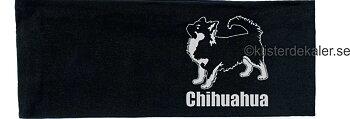 headband reflective Chihuahua