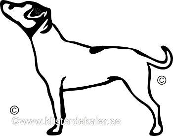 Bildekal Jack Russell Terrier profil 2
