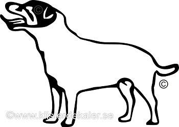 Bildekal Jack Russell Terrier profil 4