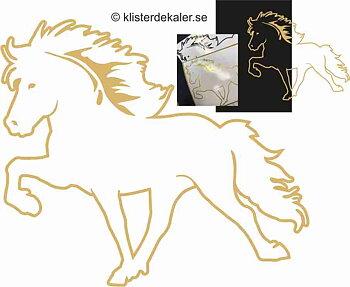Enkel Islandshäst 35