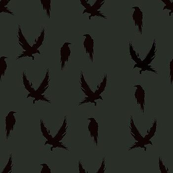 Kråkor flaskgrön