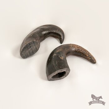 Buffelhorn 14-20 cm x 5