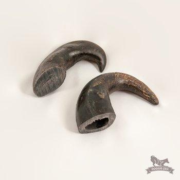 Buffalo Horn 14-20 cm