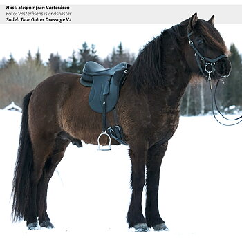 NY SADEL! Taur Gaiter Dressage V2, Brown