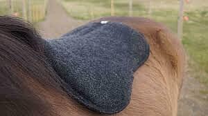 KIDKA sadelpad av 100% isländsk ull, svart