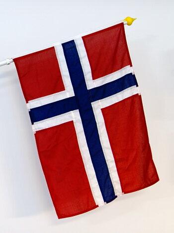 Norges fasadflagga