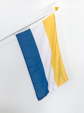 Tornedalens fasadflagga