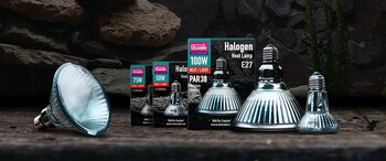 Arcadia Halogen Heat Lamp100w