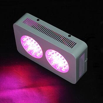 GrowFast LED 90W