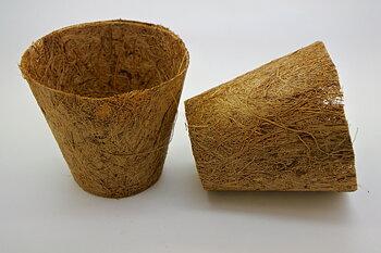 Kokoskruka 10cm (Coir Pot) 5-pack