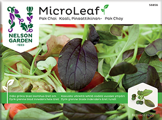 "Micro Leaf Pak Choi ""Red Wizard"""