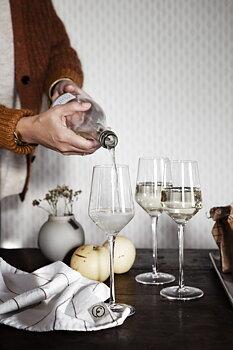 ERNST Glas för mousserande dryck 2-pack