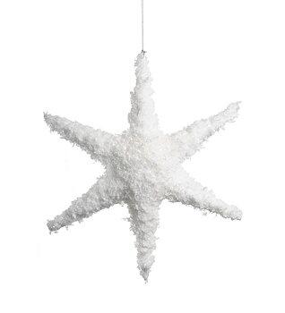 Dekorations stjärna med snö