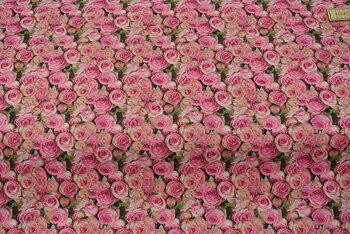 lmörk botten med rosor i rött och rosa